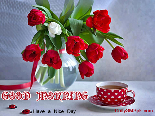 good morning Good Morning Tea Cup and Flowers Wallpapers SMS Wishes